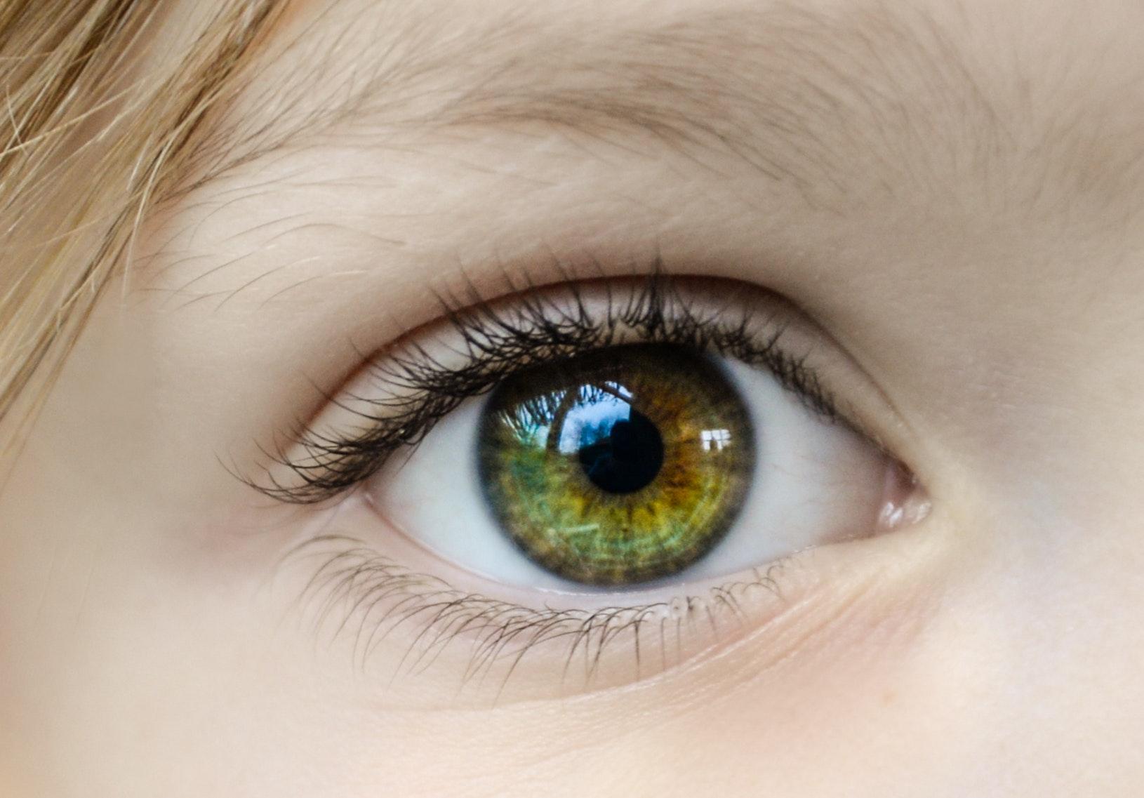 close-up-eye-eyeball-862122